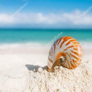 Пляжи