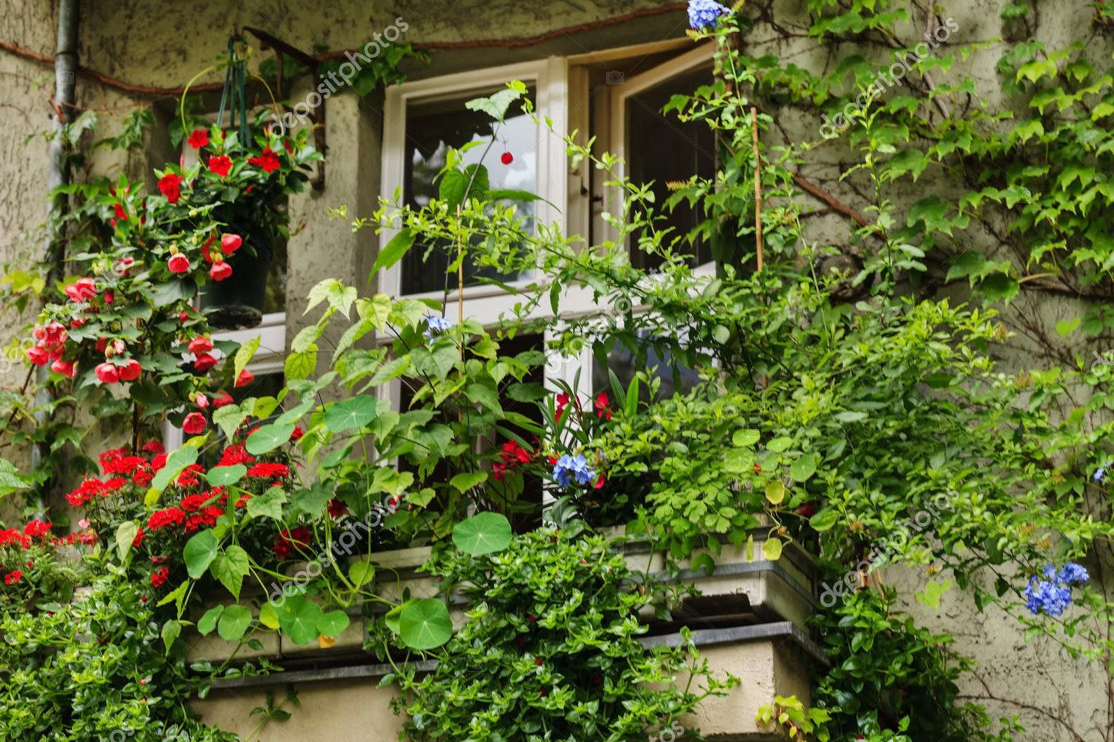 Балкон с зелеными растениями