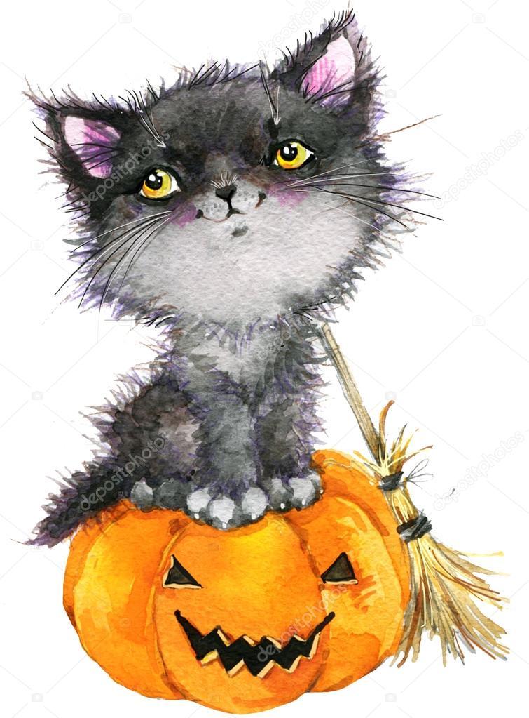 Кошечка с тыквой, Хеллоуин